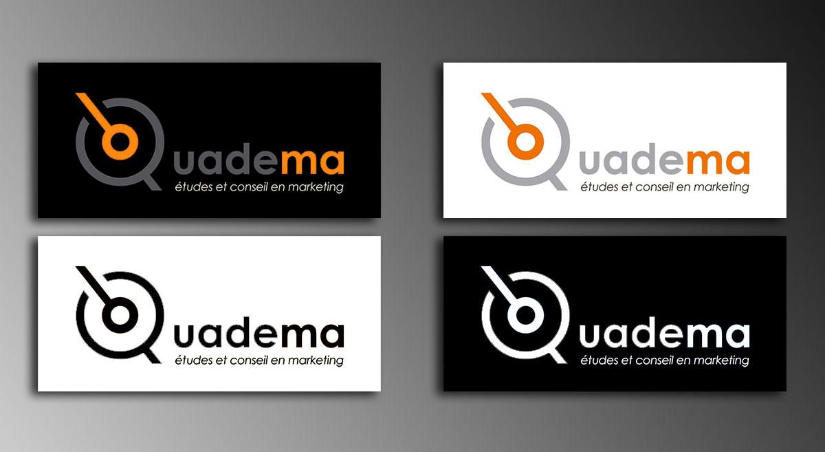 Infographiste indépendant, création de charte graphique, logo cabinet d'étude qualitative