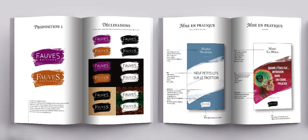 Infographiste indépendant, création de charte graphique, extrait édition livre