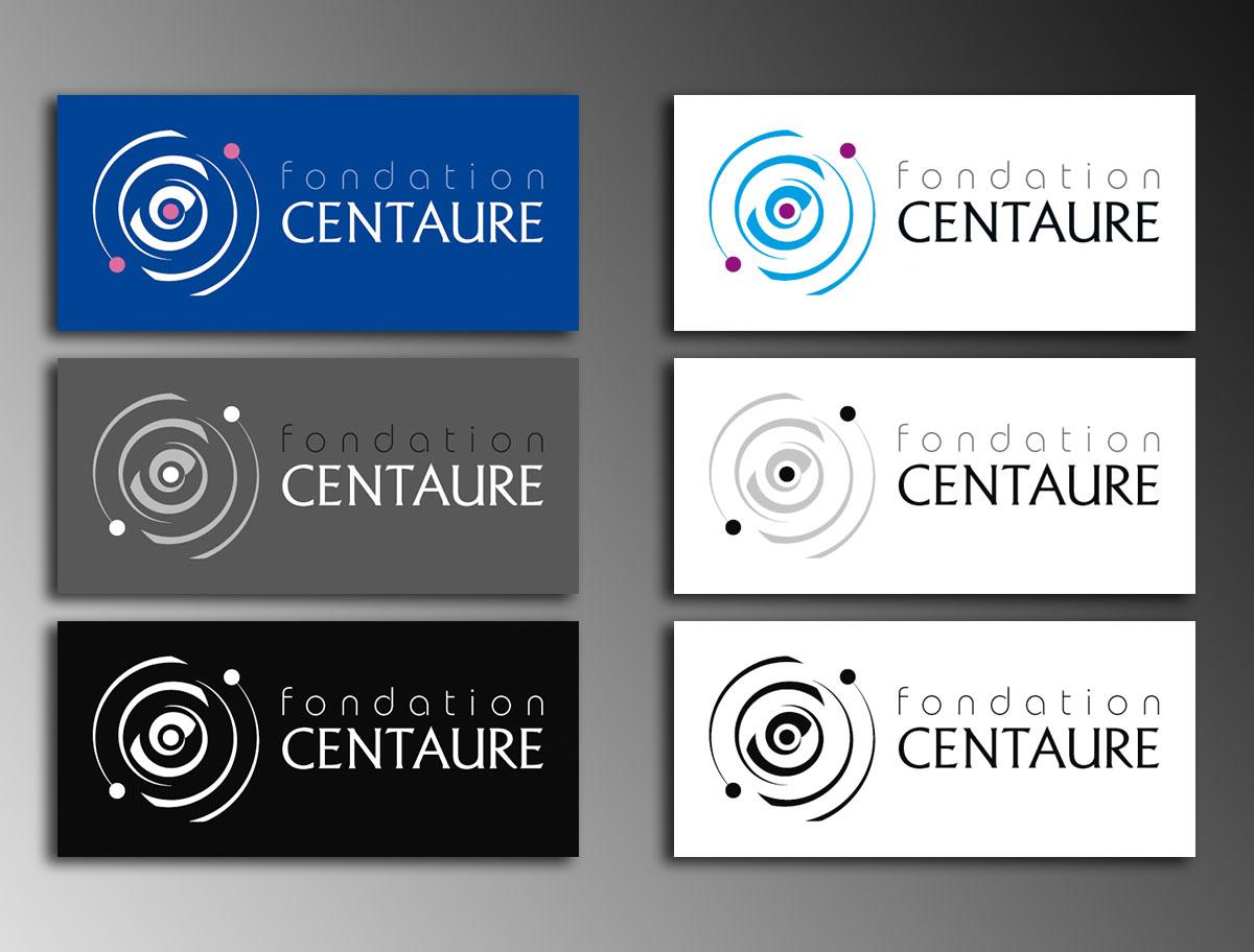 Infographiste indépendant, création de charte graphique, logo fondation scientifique