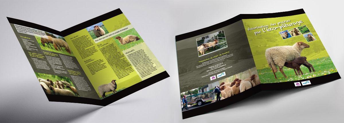 Infographiste indépendant, création et mise en page de plaquettes commerciales dépliant 2 volets Éco-pâturage