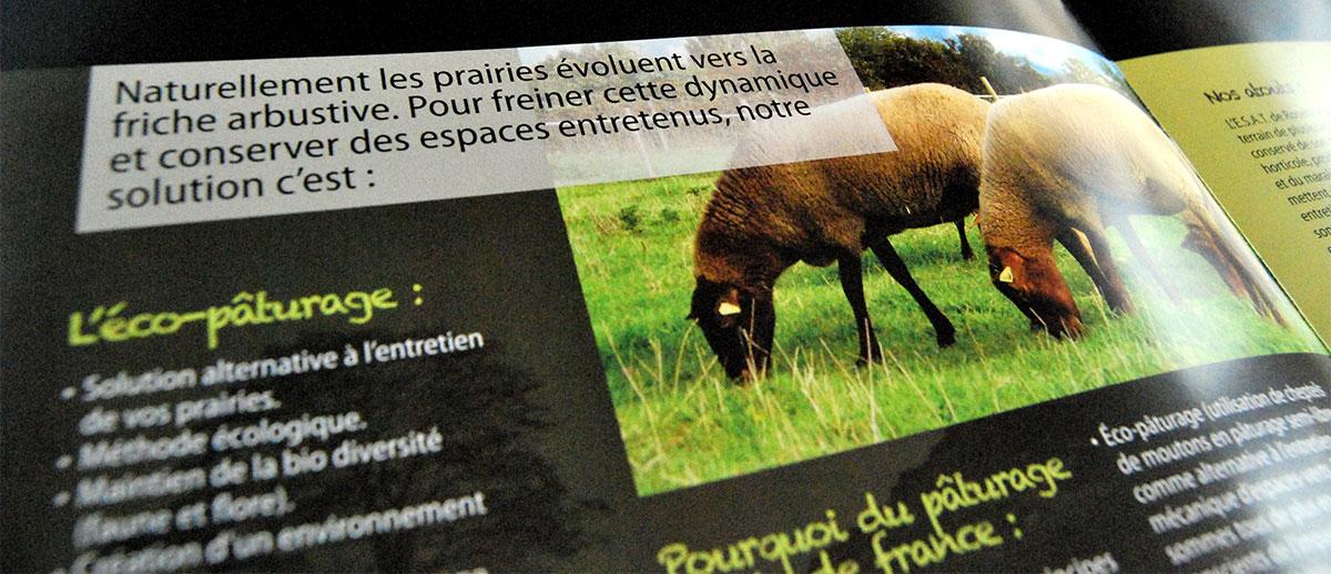 Infographiste indépendant, création et mise en page de plaquettes commerciales dépliant 2 volets Éco-pâturage Moutons