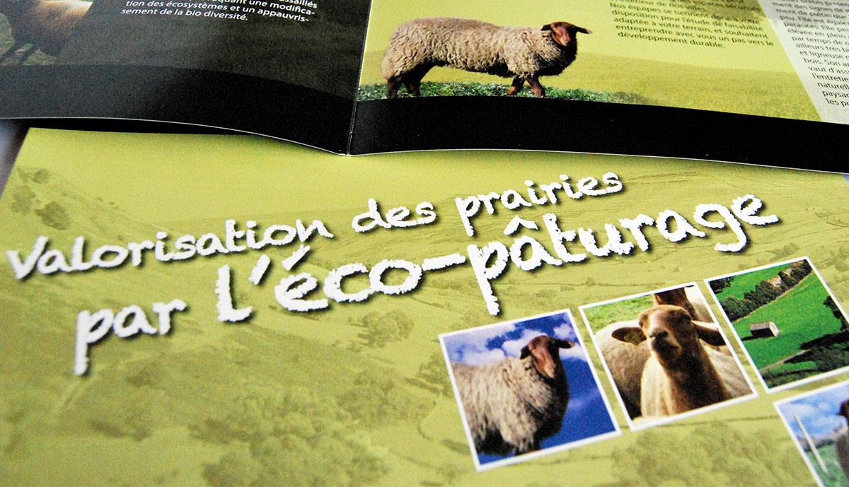 Infographiste indépendant, création et mise en page de plaquettes commerciales dépliant 2 volets ESAT éco-pâturage