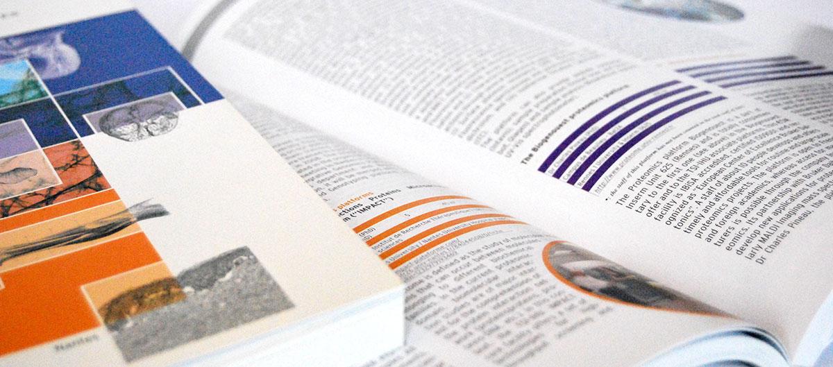 Infographiste indépendant, création et mise en page de rapports d'activité, santé