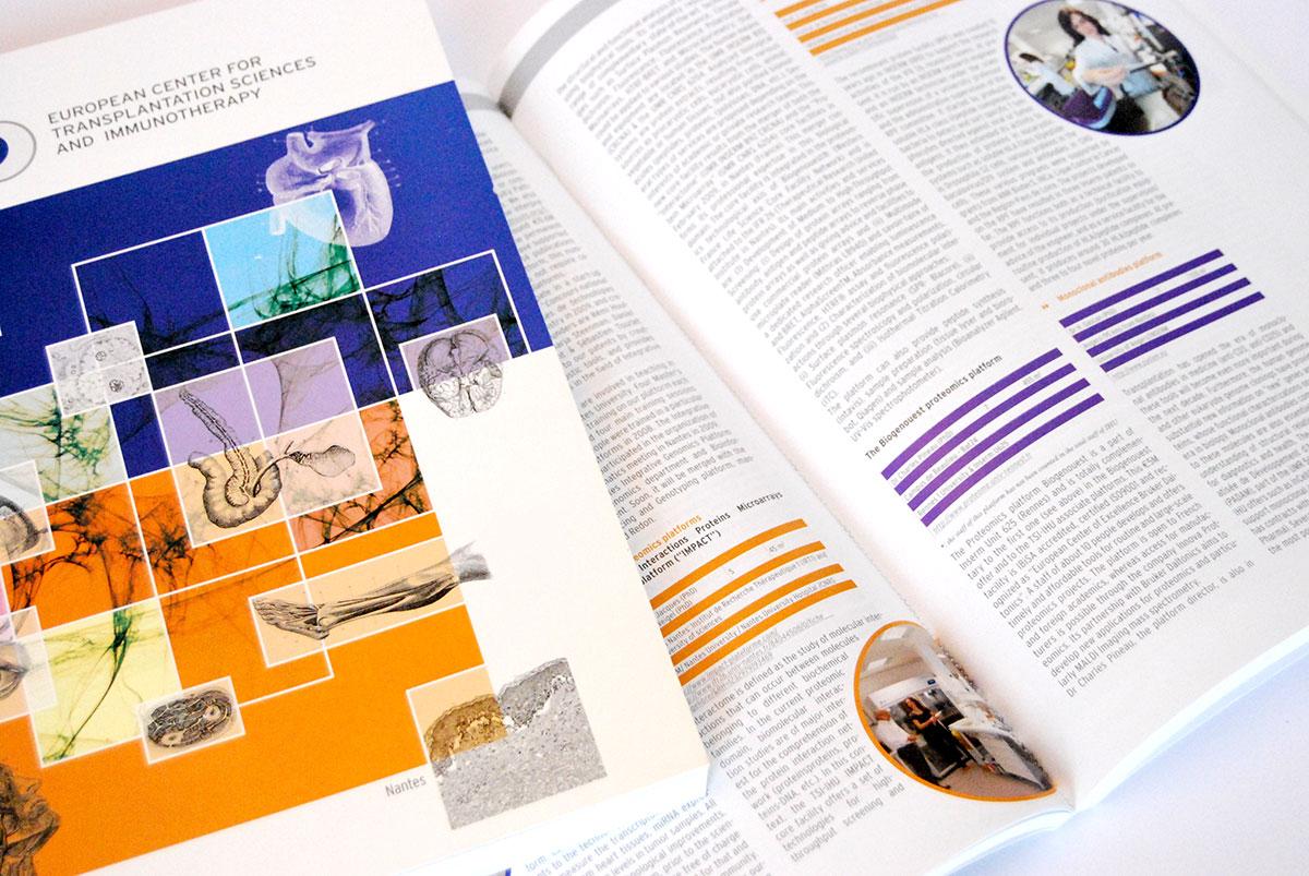 Infographiste indépendant, création et mise en page de rapports d'activité, sciences