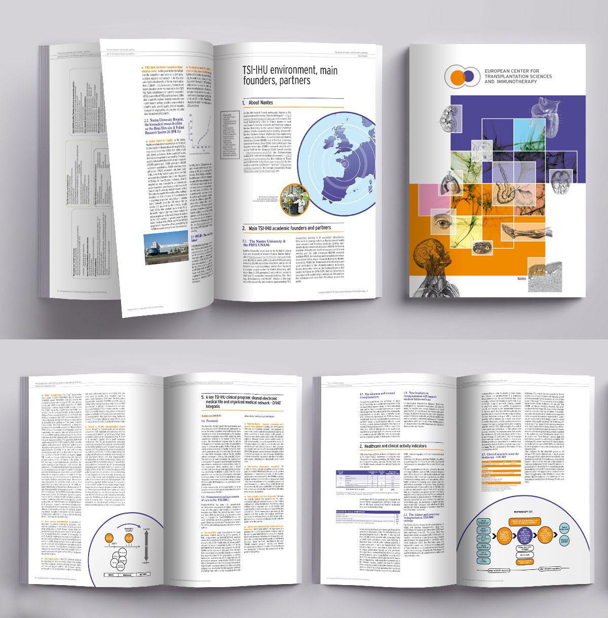 Infographiste indépendant, création et mise en page de rapports d'activité, science et transplantation
